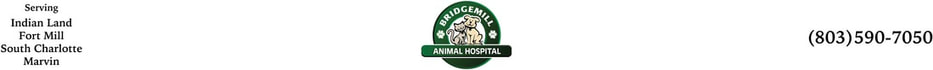 Bridgemill Animal Hospital